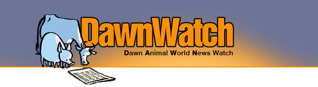 DawnWatch